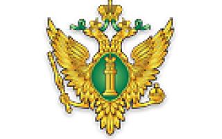 Министерство юстиции реестр экспертов техников