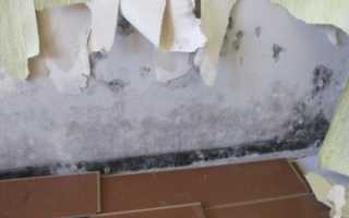 Мокнут стены в квартире куда обратиться