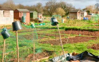 Как увеличить земельный участок